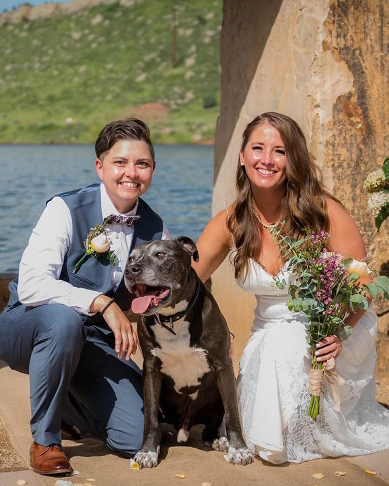 Wedding + Party Pet Attendant