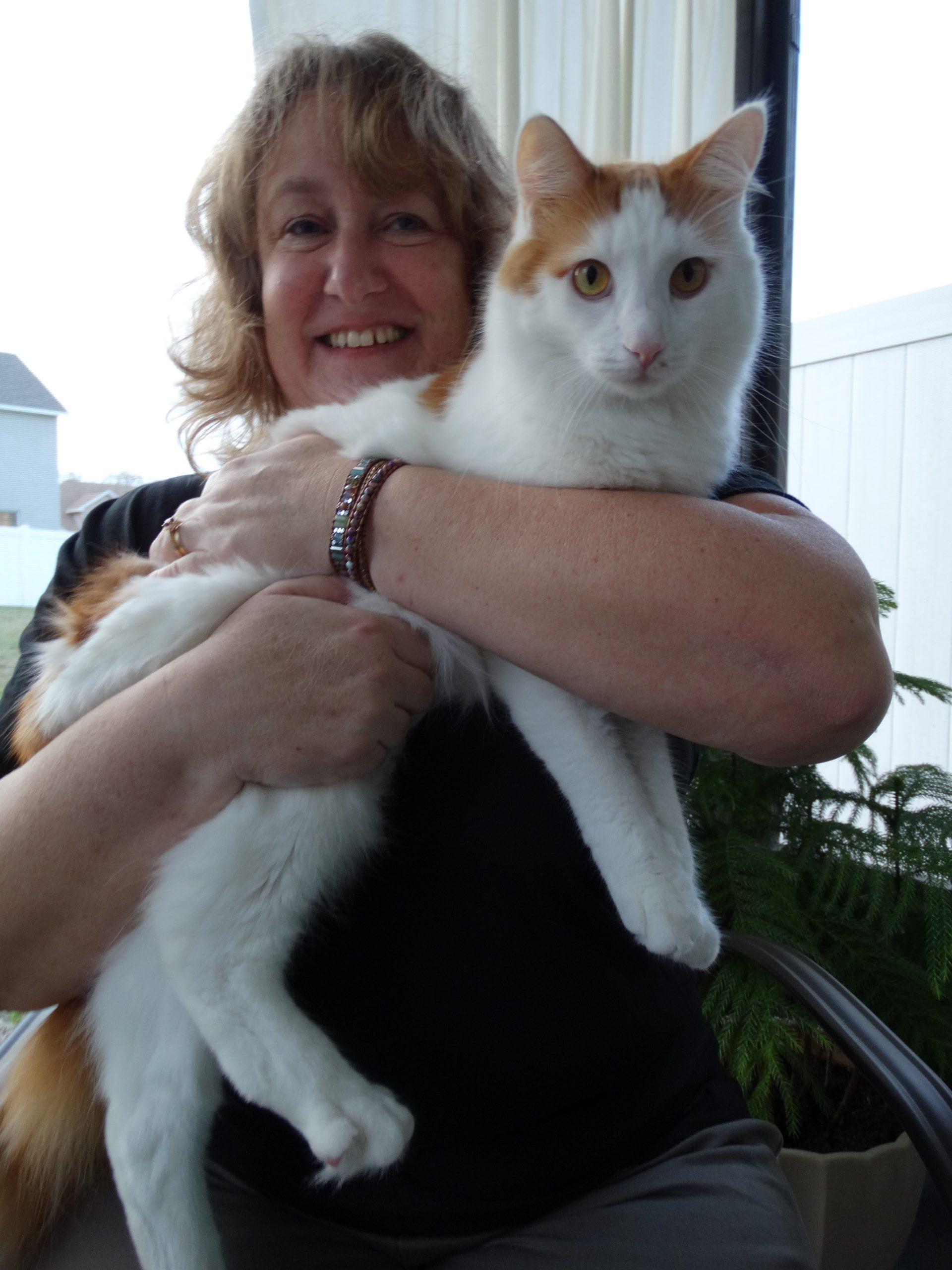 Pet Sitter Lakeland Atta Boy! Animal Care