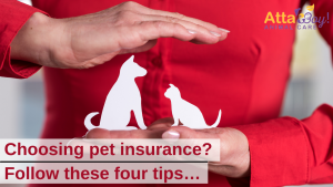 Pet Insurance Atta Boy!